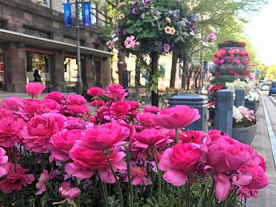 自分史活用アドバイザー認定講座 神奈川・横浜